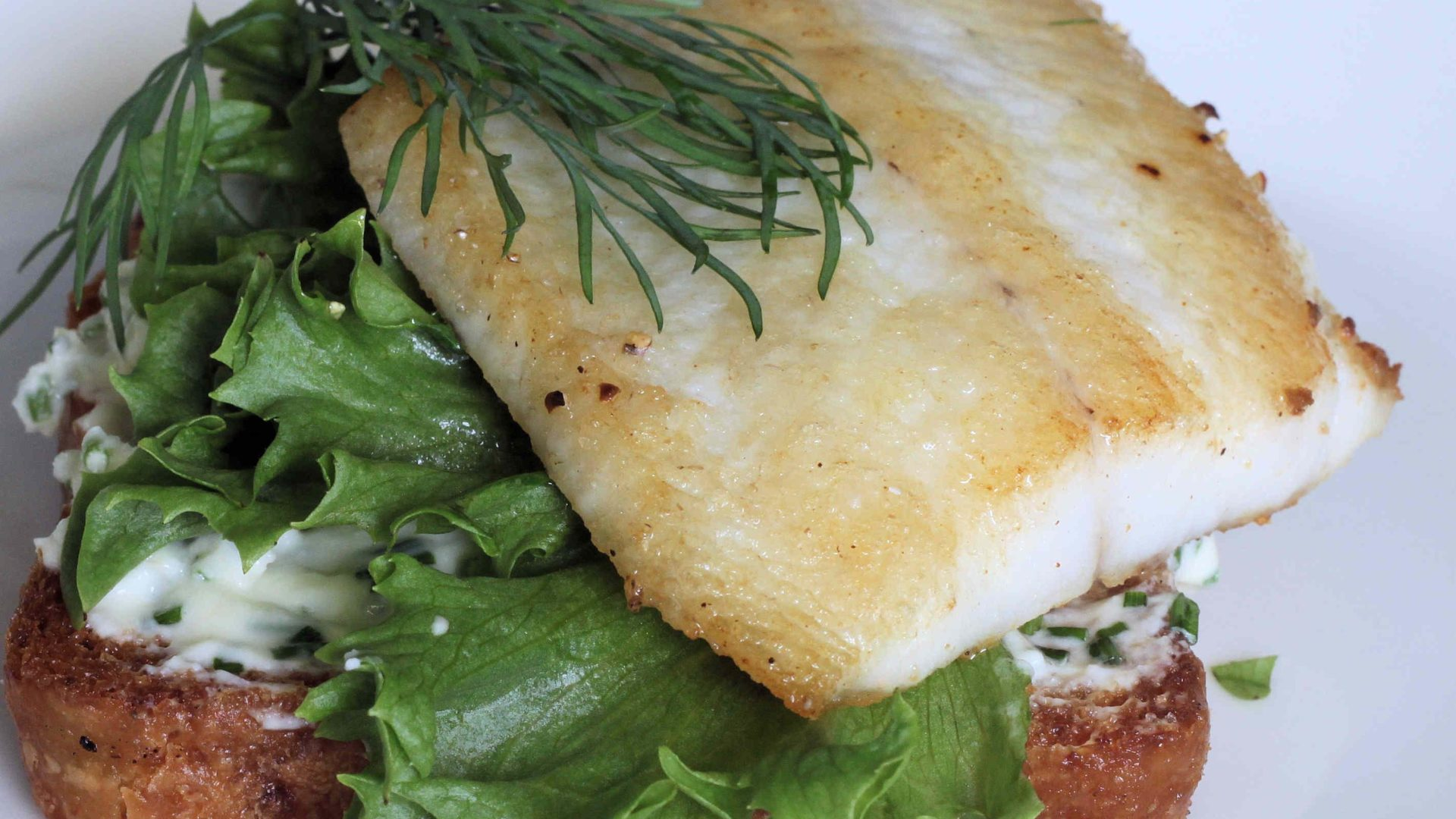 Haukileipä | Reseptit | Hätälä Oy