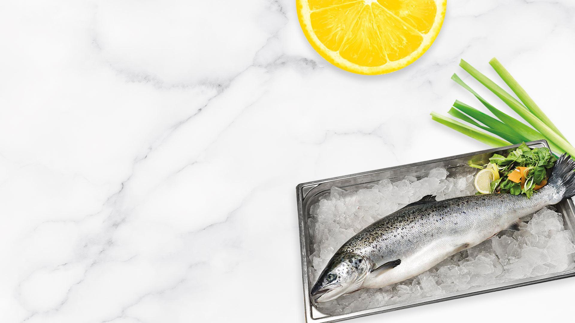 Kokonainen tuore lohi | Kalatuotteet | Hätälä