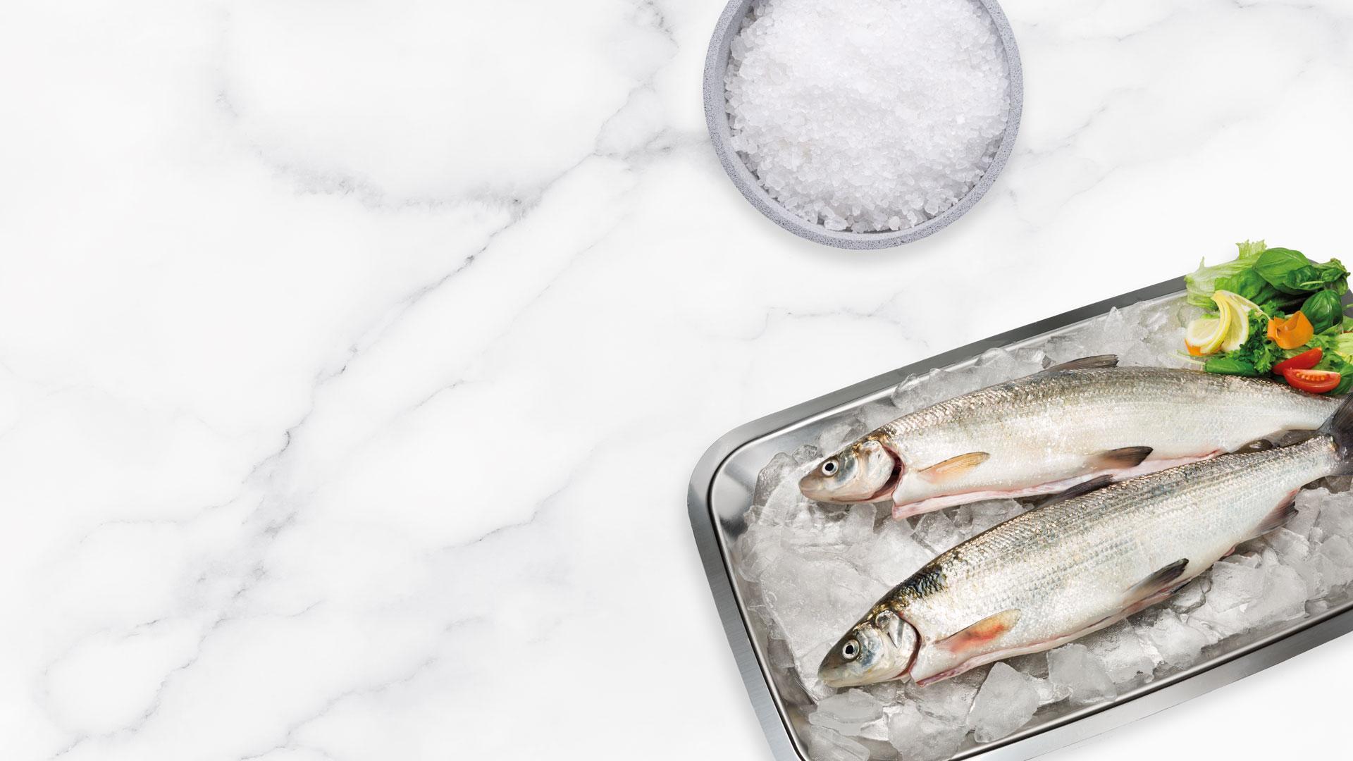 Kokonainen tuore siika | Kalatuotteet | Hätälä