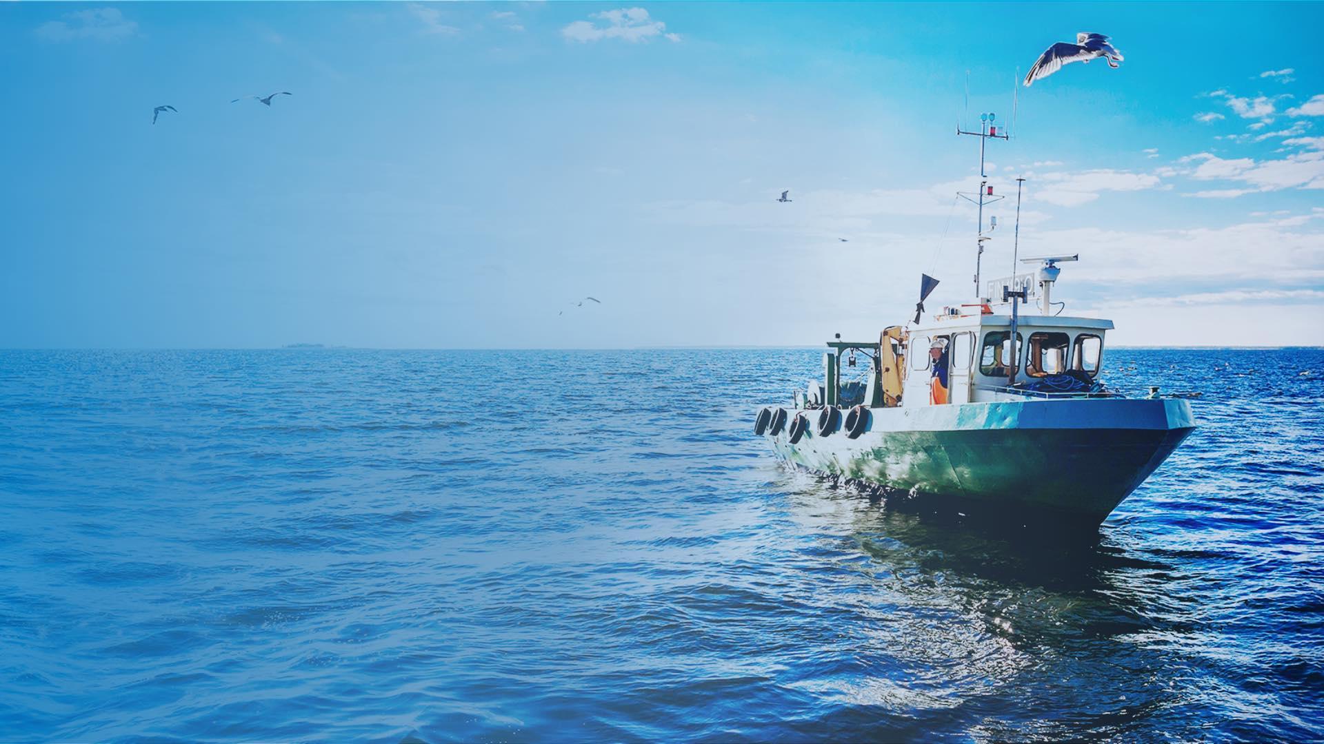 Kalastusaluksen kuva | Pohjoisen rehtiä kalaa | Hätälä