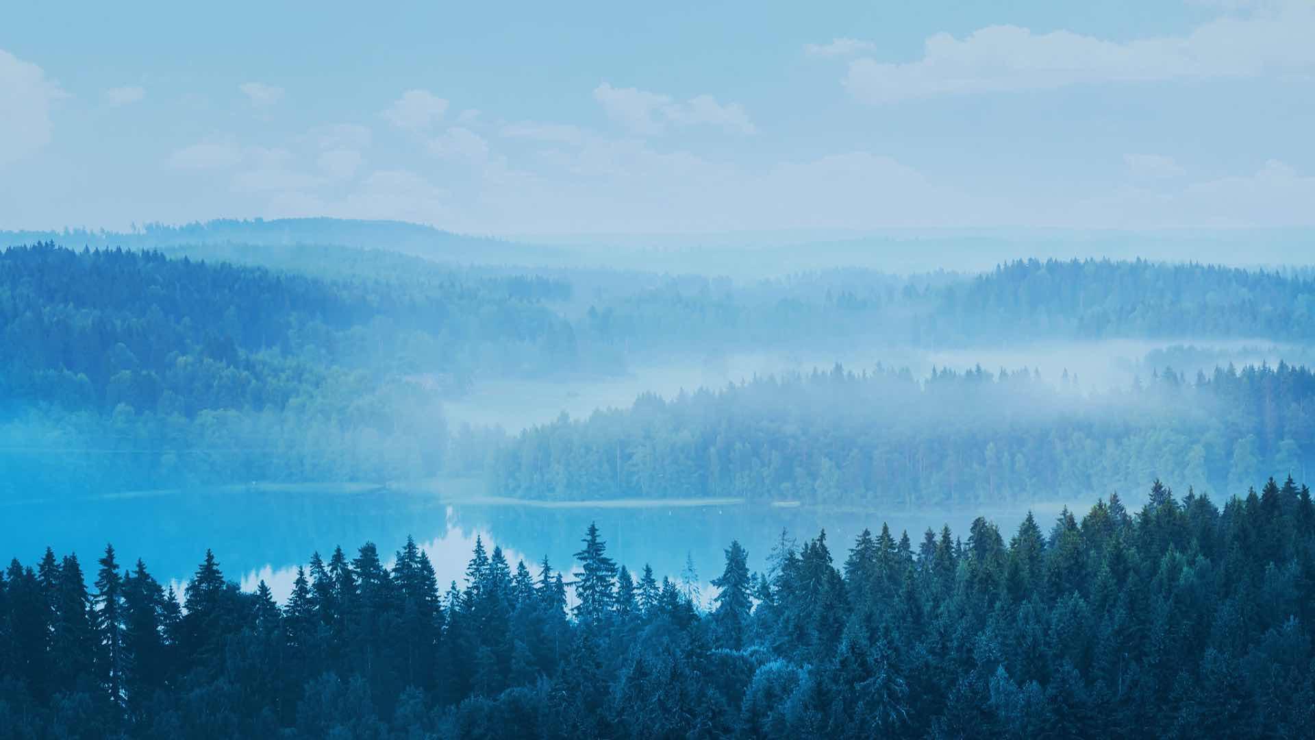 Pohjoisen rehtiä kalaa maisemakuva | Yritys | Hätälä