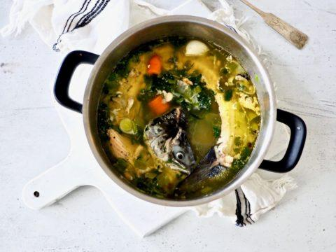 Maukas kotitekoinen kalaliemi kalanperkeistä | Reseptit | Hätälä