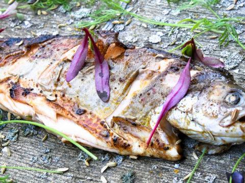 Grillimarinadi kalalle