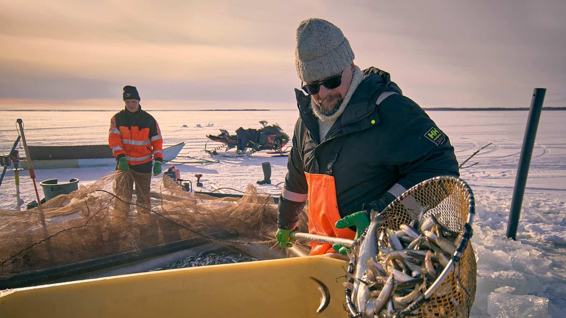 Kalastaja Lauri Halonen   Kalastajalle kiitos   Hätälä