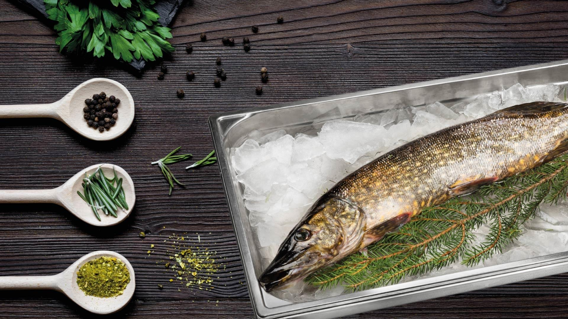 Kotimainen luonnonkala hauki | Kauden kala | Hätälä