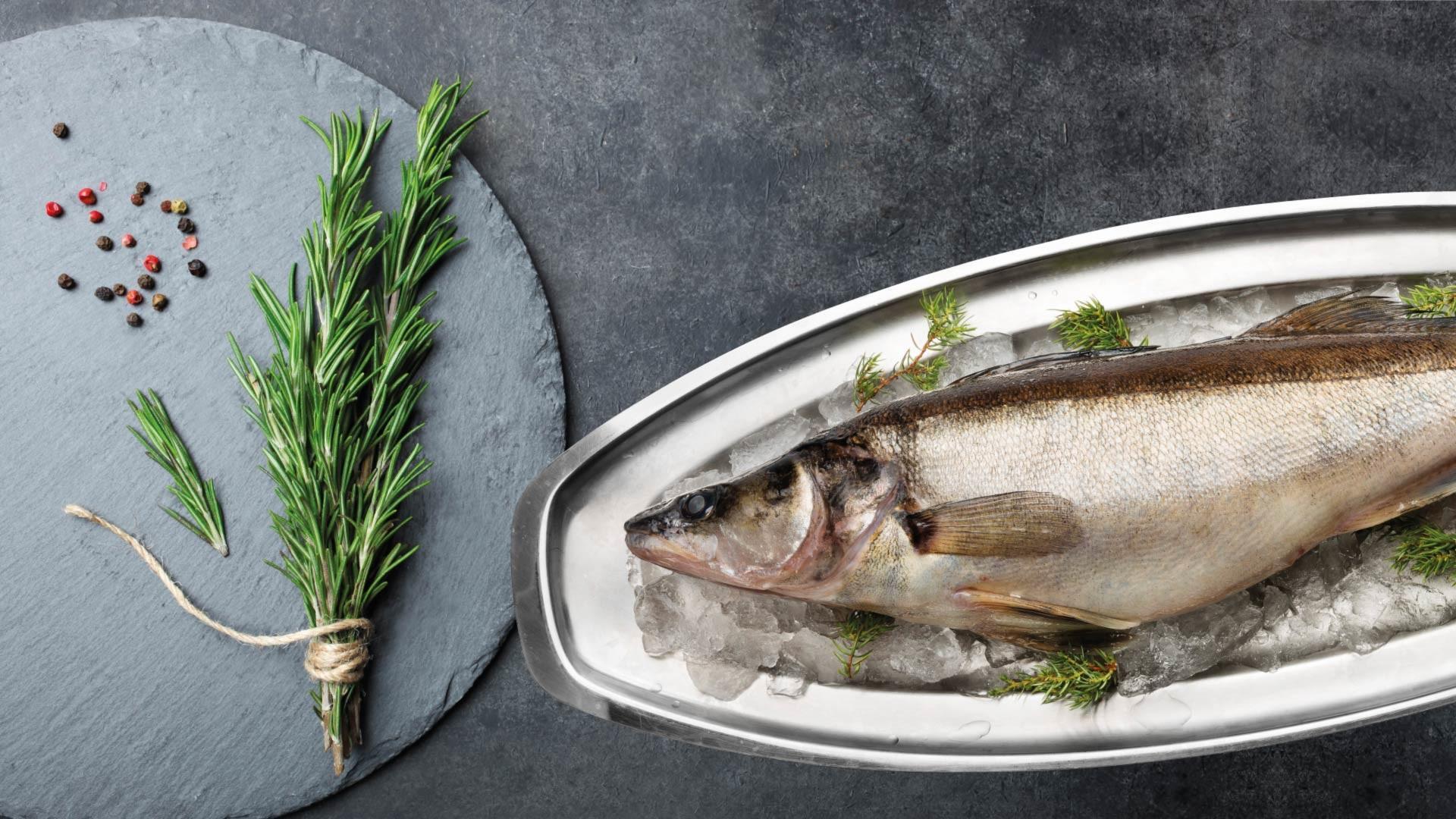 Kotimainen luonnonkala kuha | Kauden kala | Hätälä