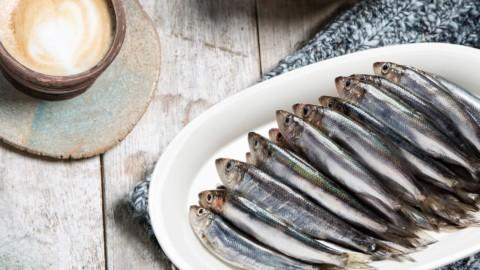 Kotimainen luonnonkala silakka | Kauden kala | Hätälä