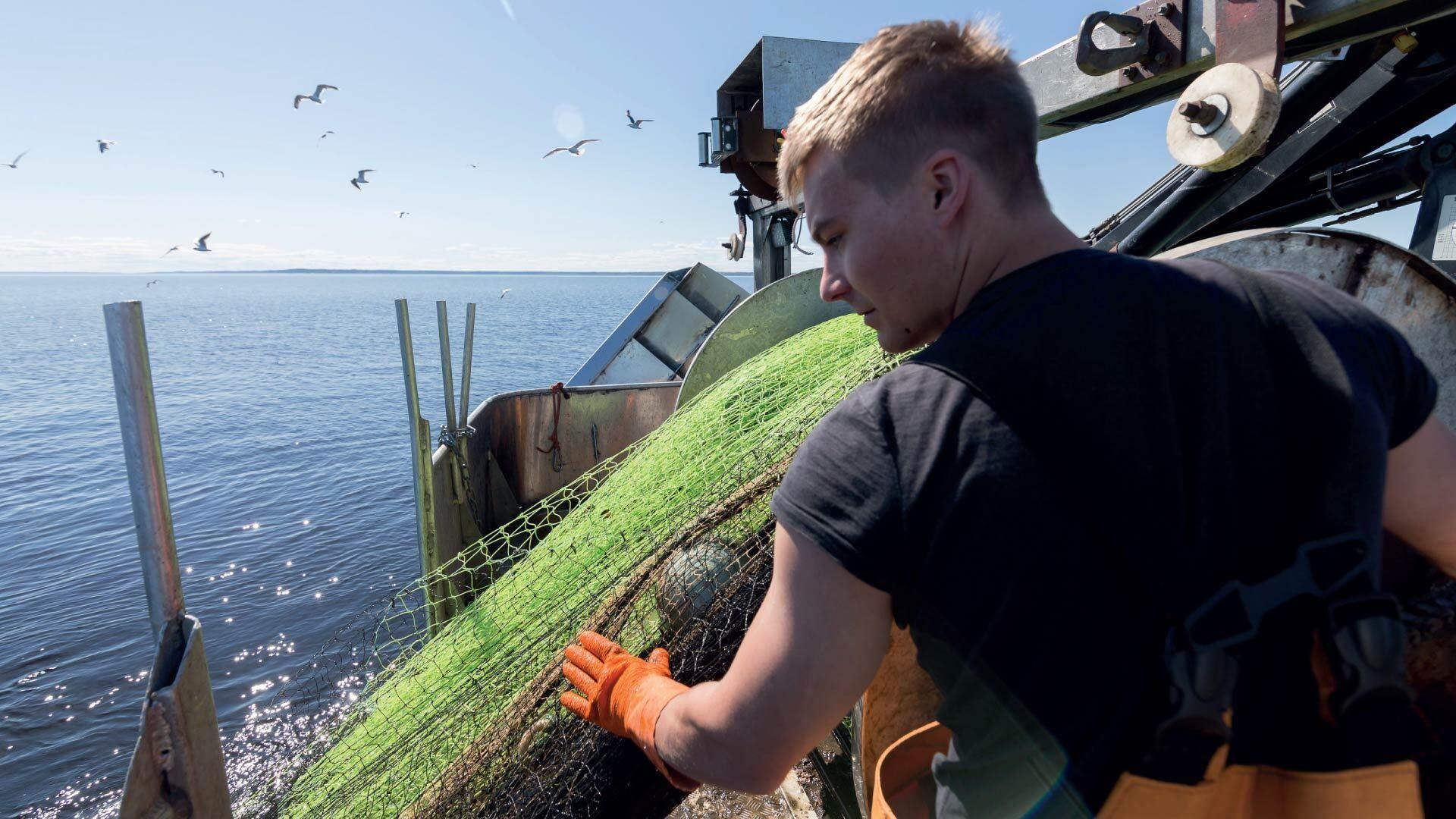 Hätälän kalastaja Jarkko Ålander troolaamassa