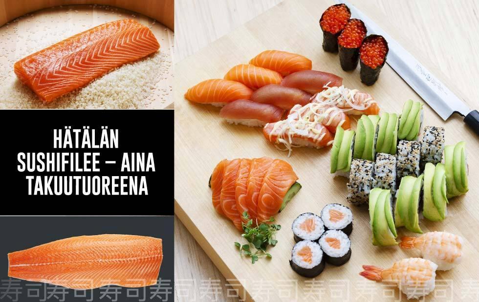 Hätälän takuutuore sushifilee sushibaareille