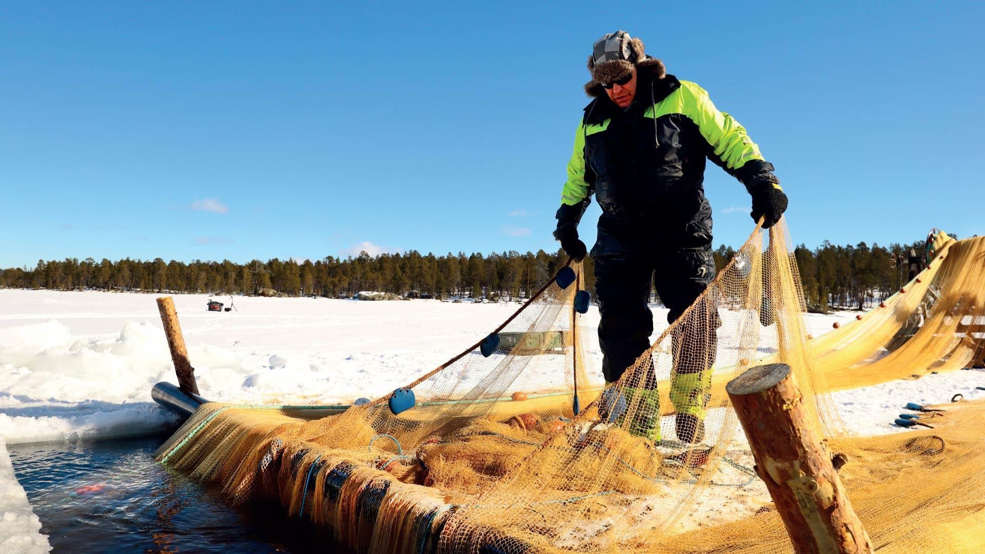 Hätälän kalastaja Juha Kyrö Inarijärvellä