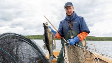 Hätälän kalastajat vinkkilaatikkokuva